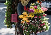 Negozi di fiori