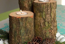 DIY Tree Stumps / Different types of wood furniture and accessories