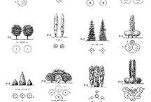 Diseño paisajistico