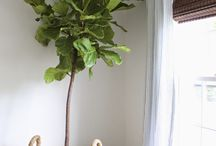 Home decor ideas / Home decoration, plants, outdoors, All about design..