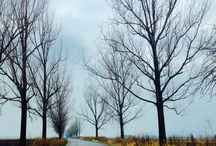 Travel / Trips.landscapes.nature