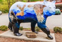 Cherokee Bears