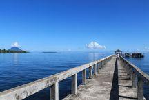 Landscape / Landscape of Cocotinos Manado