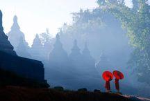 Solitude / To find your inner Zen