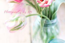 flower photo style