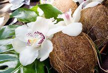 egzotic island wedding