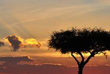 Kenia Landschap