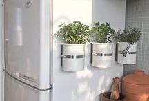Decoração - plantas