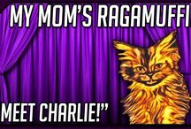 My Mom's Ragamuffin Cat