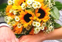 Sunflowers / A selection of inspirational images of sunflowers for you to admire