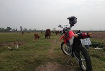 NORTHERN VIETNAM MOTORBIKE TOURS / Northern Vietnam is always the perfect choice for motorbike tours in Vietnam, this Northern Vietnam Motorbike tour is the best in our motorbike tour collection. #NORTHERN VIETNAM MOTORBIKE TOURS - http://vietnammotorbikeride.com/ #NORTH VIETNAM MOTORBIKE TOURS - http://vietnammotorcycleride.com/