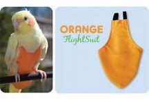 Papagaai & Vogel Accesoires
