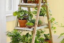 Plant stands indoor / #Plant #stand #indoor #interiordesign #planters #greenery #green #homeplants