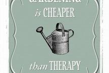 Gardening Ideas / by Jenna Lee