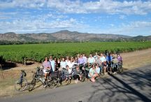 Napa Valley Bike Tours - A Great Way to See the Valley! / Napa Valley Bike Tours is our favorite biking partner!  Come experience the vineyards on two wheels!  http://www.napavalleybiketours.com / by Inn on Randolph