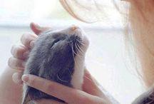 Love & Tenderness