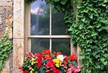 Romantic windows