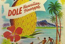 Travel |Hawaii|