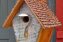 birdhouse / by Christy miller