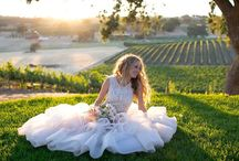 San Diego Wedding Photographers / Looking for San Diego wedding photographers? You've come to the right place!