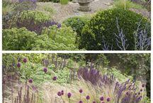South porch garden design