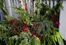 outdoor floral containers / Christmas