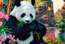 Ursos e Pandas