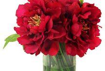 Букеты цветы