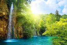 Beautiful Natures