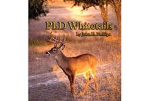Deer Hunting and Deer Photos / Tips and Tactics for Hunting Deer