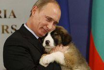 Putin ❤️