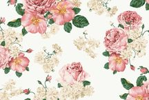 kwiaciarnia Szczecin / Zielona Moda to natchniona naturą szczecińska kwiaciarnia i pracownia florystyczna wyspecjalizowana  dekoracjach kwiatowych i aranżacjach okolicznościowych. Zapraszamy do kwiaciarni Jagiellońska 6 Szczecin