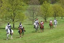 Endurance riding related news and articles / Sources of endurance riding related news and articles