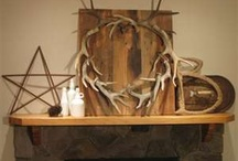 Displaying dead animals - with style!
