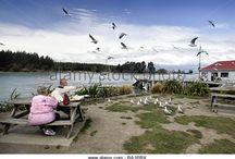 Active Seniors - beach