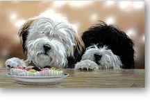 Tibetan Terriers / by jan martes