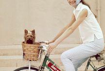 Audrey hepburn bicycle