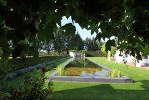 Strakke vijver tuin / Harry Esselink Hoveniers heeft deze tuin omgetoverd tot een sfeervolle tuin met een grote strakke vijver.