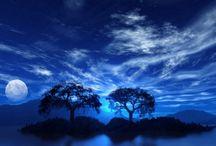 Blue / by Debbie Stevens Heazle