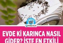 karıncalar için ilaç