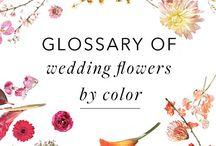 Inspiration: Floral