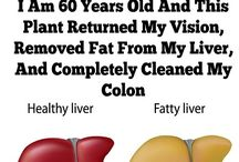 This Plant for a pure cleansed for liver and colon
