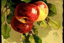 яготки