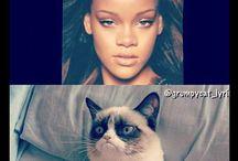 Hehehehehe Grumpy Cat