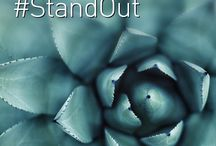#StandOut and Be Inspirational / This board features a series of inspirational posters, coz we believe that all of us can #StandOut from all challenges in life.