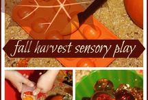 Sensory bin ideas