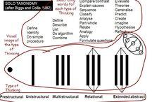 solo taxonomy primary / Solo taxonomy