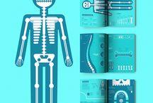 ANATOGRÁFICO   Salud Visual / Anatográfico es mi proyecto final de carrera. Este proyecto trata sobre la capacidad del diseño gráfico de la información para abarcar temáticas complejas, como la anatomía humana.   El resultado es una guía visual sobre anatomía y otras cuestiones y datos complementarios sobre salud humana.