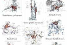 tabla grupos musculares 01