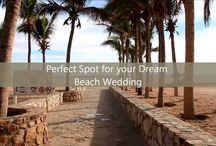 Wedding Videos  / Weddings in Cabo San Lucas Contact www.CaboBeachWeddings.com for your dream destination wedding planning services.